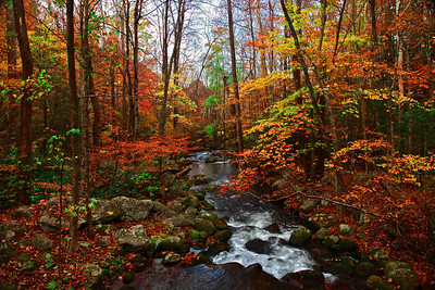 A creek runs through the Smoky Mountains National Park on a fall day in October 2010. This photo was taken near the Roaring Fork Motor Trail.