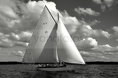 Nautilus NY30 #16