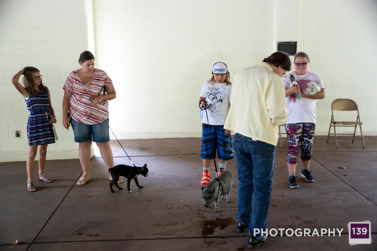 Pufferbilly Days Pet Show - 2017