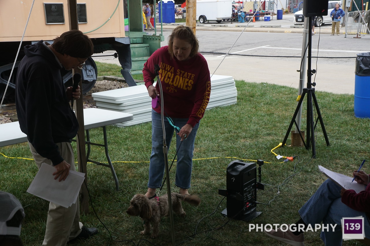 Pufferbilly Days Pet Show - 2019