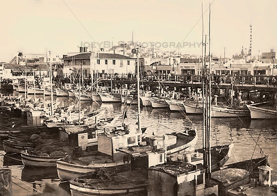 San Francisco Wharf in the 19th Century