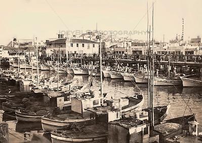 San Francisco Wharf in the 19th Century
