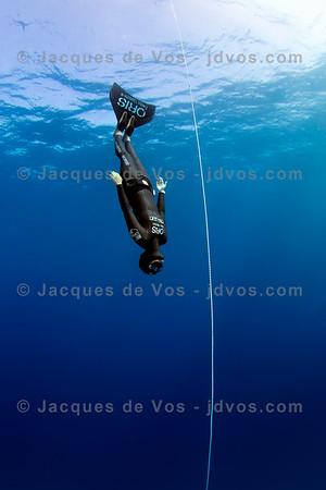 Anna von Boetticher diving deep.