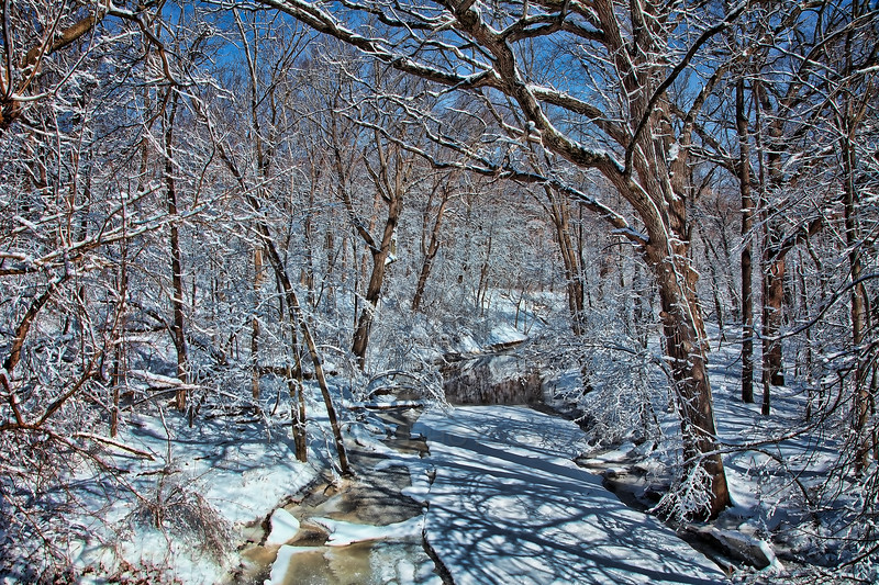 Winter at Plum Creek