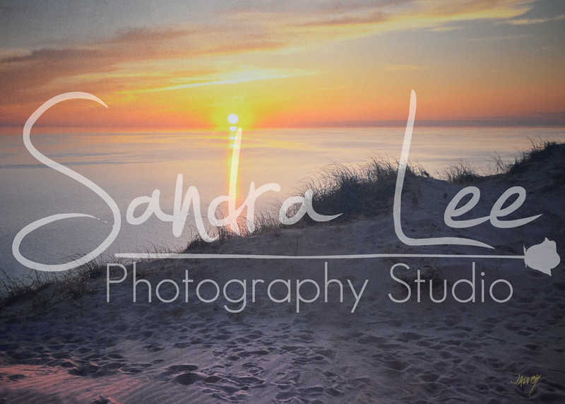 Stafford's Art Gallery<br /> Product Photography for Petoskey Downtown Catalog<br /> <br />  Sandra Lee Photography Studio & Gallery<br />  318 E Mitchell St<br />  Petoskey, Mi 49770<br />  231-622-2066<br />  sandraleephotography@hotmail.com