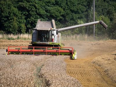 Harvesting, S Yorkshire