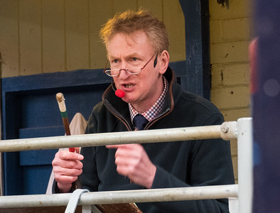 Leyburn Auction Mart Jan 2020 (45)