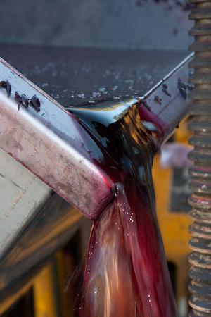 37 Cellars Wine Pressing 2010