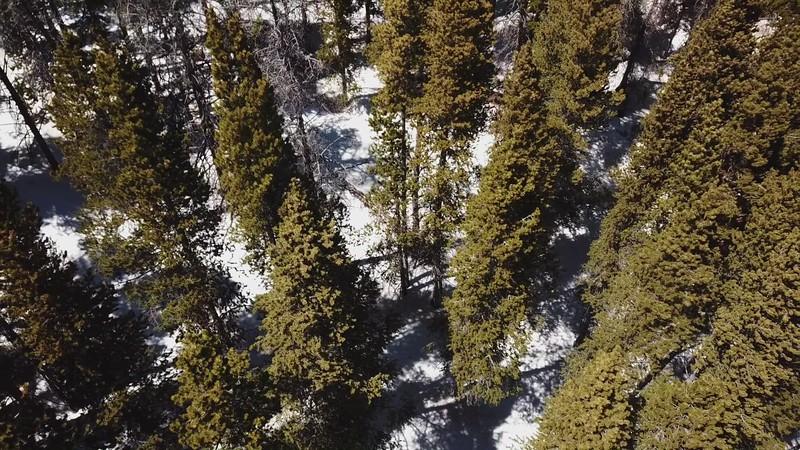 SMG Drone4
