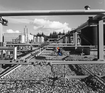 Oil field, Hampshire, UK