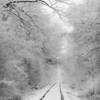 Spring Snow_Ohio_