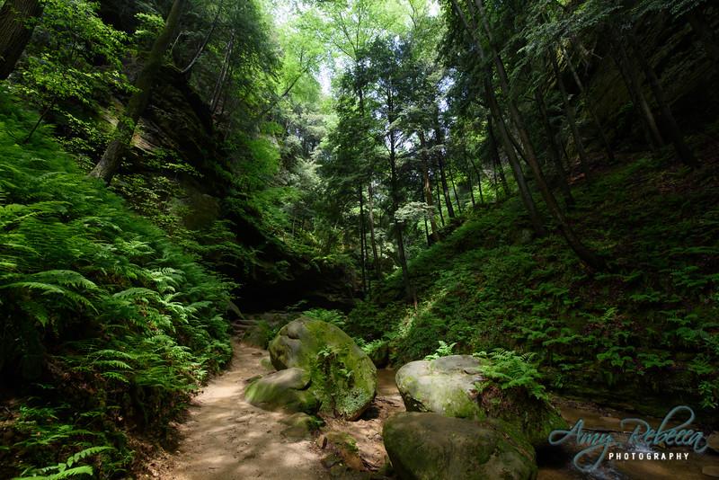 Conkle's Hollow Hike_Ohio_