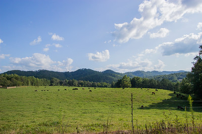 Clay Co Hayesville (3)