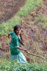 06110014 - Sri Lankan girl in the field.