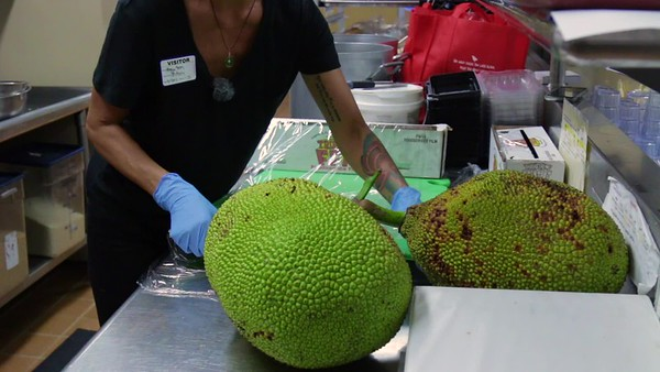 How to Process Young Jackfruit For Cooking