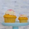 Blue Crab Cupcakes-7