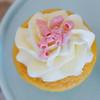 Blue Crab Cupcakes-9