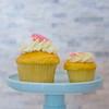 Blue Crab Cupcakes-8