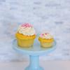 Blue Crab Cupcakes-5