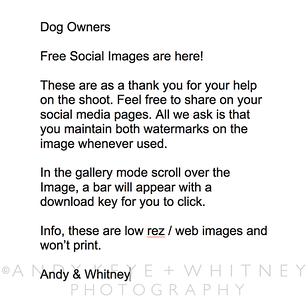 Web Image Info