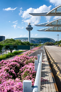 Changi Airport T2 for CAG