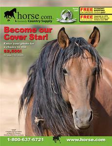 Stallion Cover