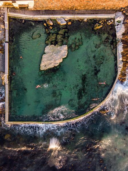 Dalebrook tidal pool, 2019