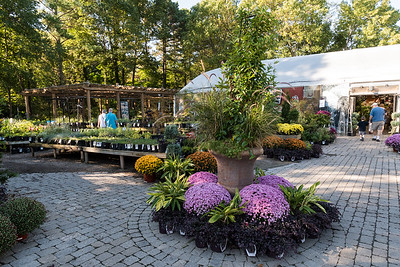 Garden Supply Co, Cary NC