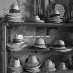 Plate # 48, Mexican Hats