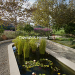 Garden feature 1