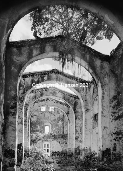Plate # 18, Tabi Sanctuary, Yucatan
