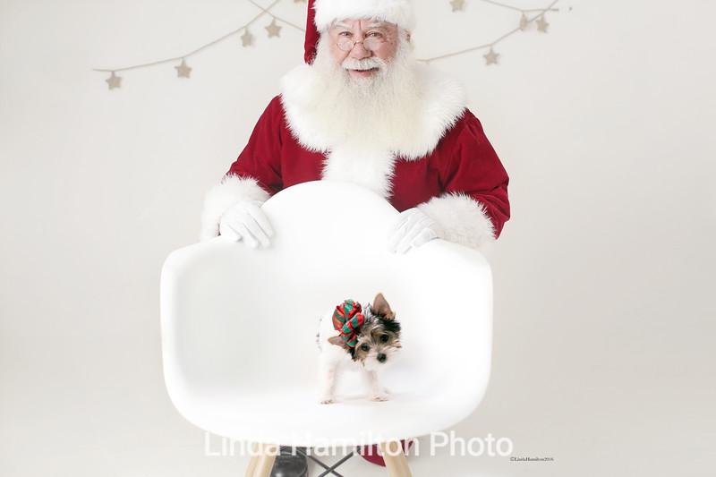 Santa Smiling copy copy