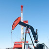 Betts_Rig1-0695
