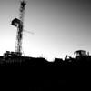 shale bin loader-0474