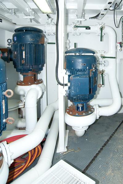 pumps-0293