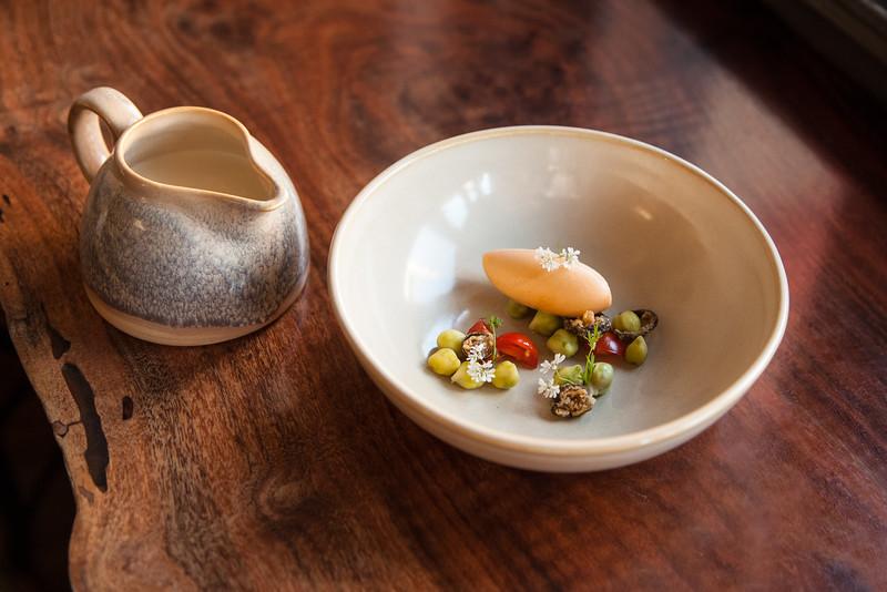 Toucan Soup
