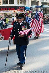 Distinguished Military Veteran at the NYC Veterans Parade