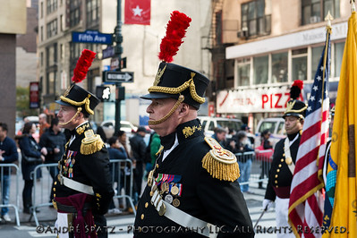 Distinguished Military Veteran at the NYC Veterans Parade