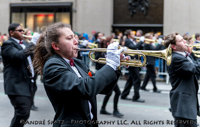 Dover Union - Free School District - Middle  and High School Bands