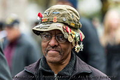 Veteran at a ceremony before the start of the 2013 Veterans Day Parade.