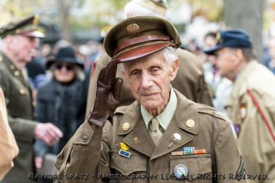 Veteran salutes  at a ceremony before the start of the 2013 Veterans Day Parade.