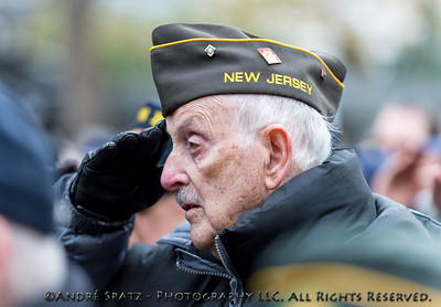 Saluting Veteran at the Veterans Day Parade.