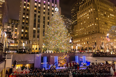 The 76-foot Christmas tree is seen all lit up during the 81st Annual Rockefeller Center Christmas Tree Lighting Ceremony.