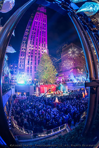The Rockefeller Center Christmas Tree dazzled the crowds in New York City.