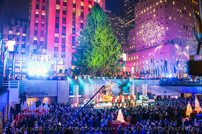The tree waits to be lit prior to the 81st Annual Rockefeller Center Christmas Tree Lighting Ceremony