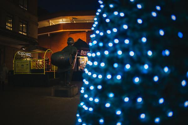 08. Festive Lights Tree
