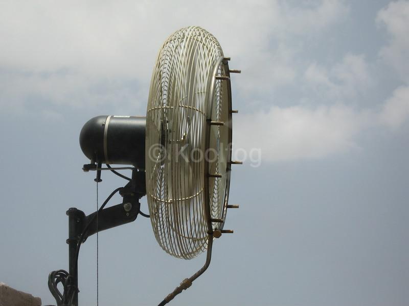 Oscillating Fan Zoom