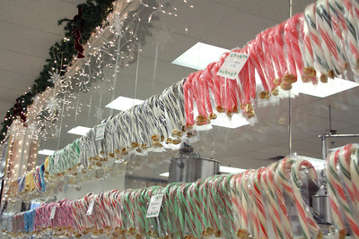 Candy_Canes_Dec2011-019