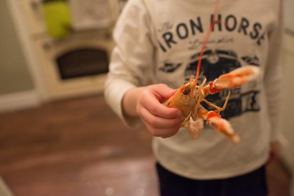 Seafood home (4)