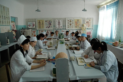 Classroom for training nurses at the Hospital Training facility in Mongolia. Sainshand Medical College Dornogobi aimag.